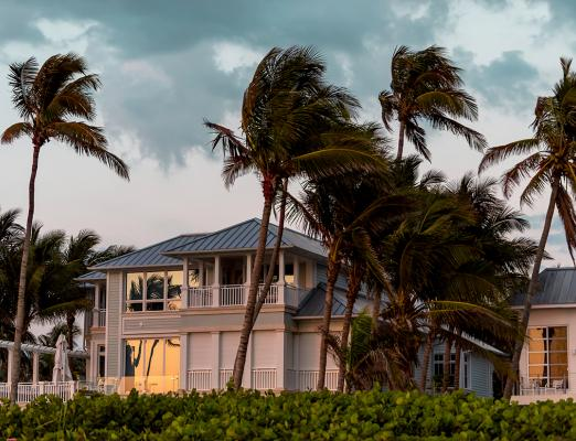 Palm trees blowing in front of waterfront home.